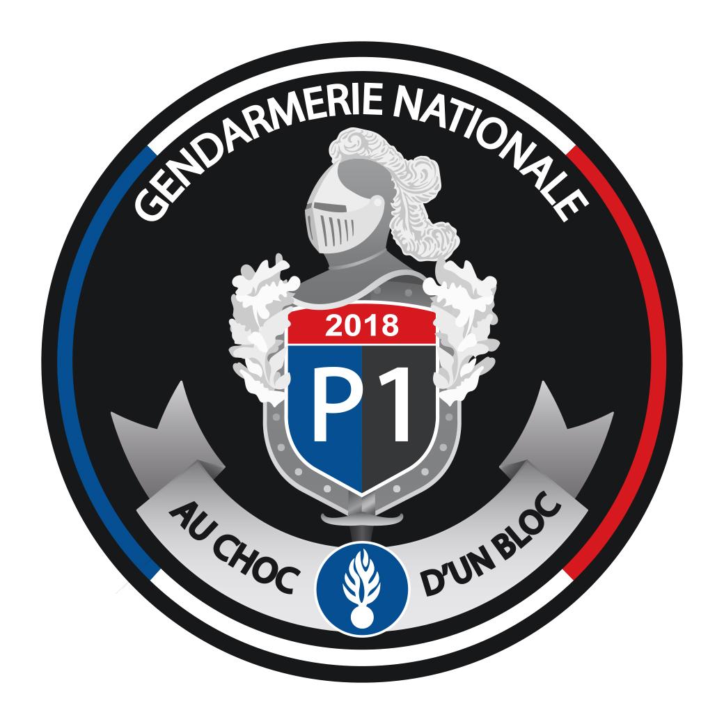 LOGO POUR DES RÉSERVISTES DE LA GENDARMERIE NATIONALE LOGO POUR DES RÉSERVISTES DE LA GENDARMERIE NATIONALE