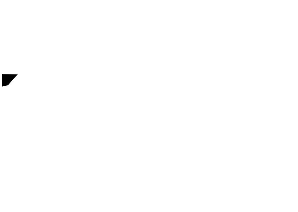 negatif vectoriel du logo pour un coursier